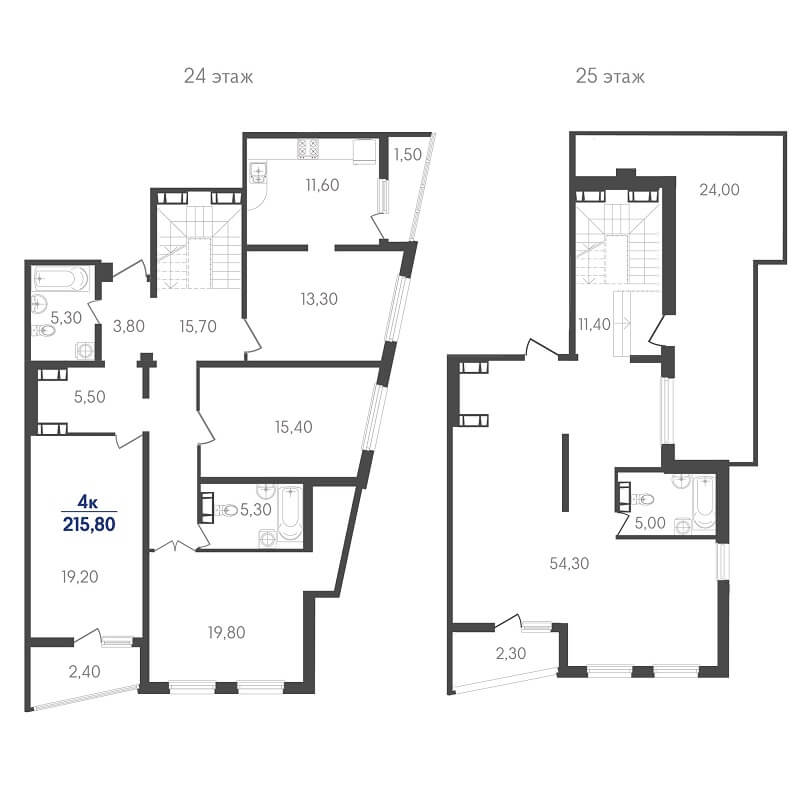 Планировка пентхауса, S = 215,80 м²